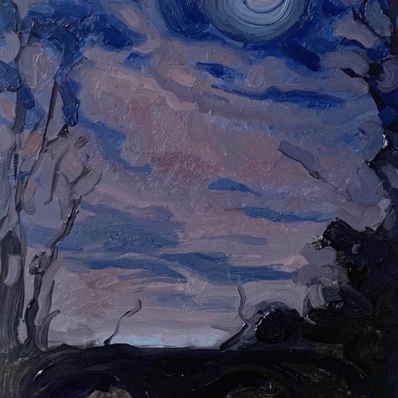 Forest with Sky at Night